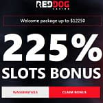 Red Dog sign up