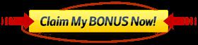 slots bonus online casino