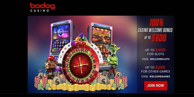 bodog winners big pay out